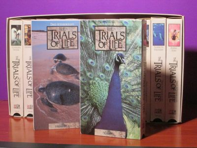 The Trials of Life VHS Set - Sweet N Evil